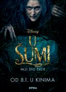 <b>Colleen Atwood</b><br>U šumi (2014)<br><small><i>Into the Woods</i></small>