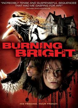 Burning Bright