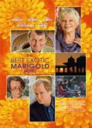 <b>Judi Dench</b><br>Marigold Hotel (2011)<br><small><i>The Best Exotic Marigold Hotel</i></small>