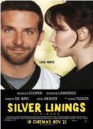 U dobru i u zlu (2012)<br><small><i>The Silver Linings Playbook</i></small>