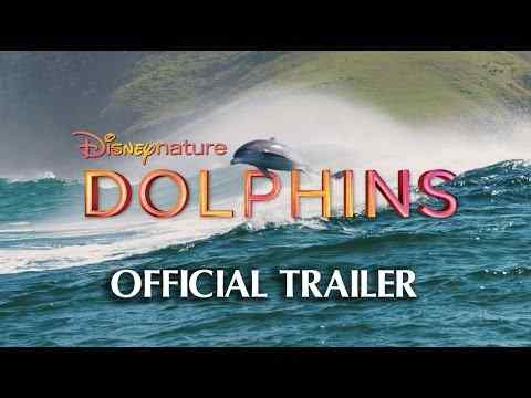 Dolphins - trailer