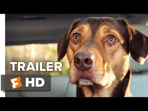 A Dog's Way Home - trailer 2