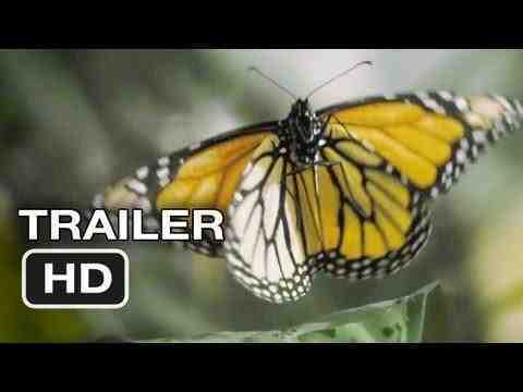 Flight of the Butterflies - trailer